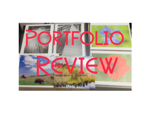 Portfolio Review Services